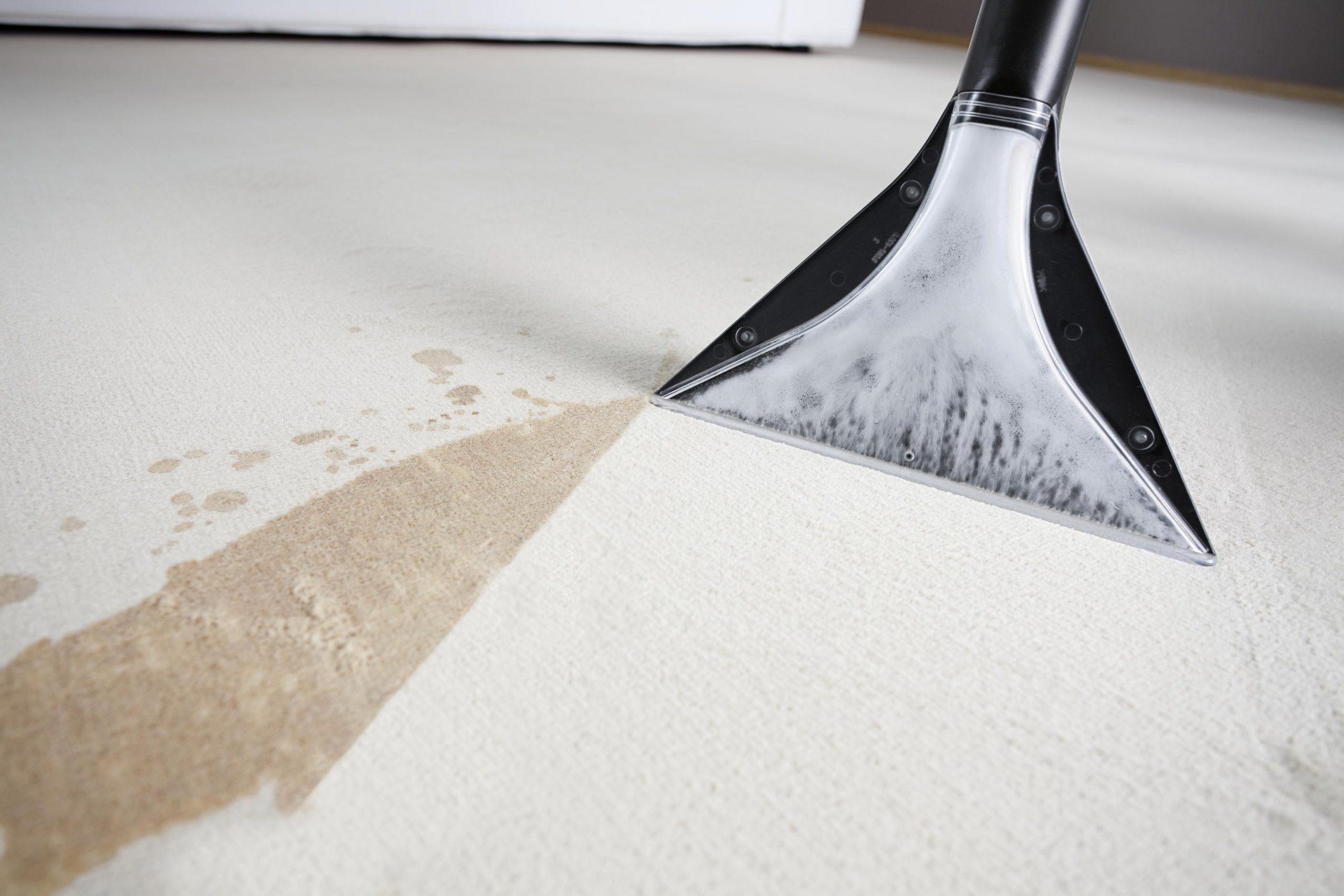 химчистка ковров и мебели в офисе - услуги в Краснодаре